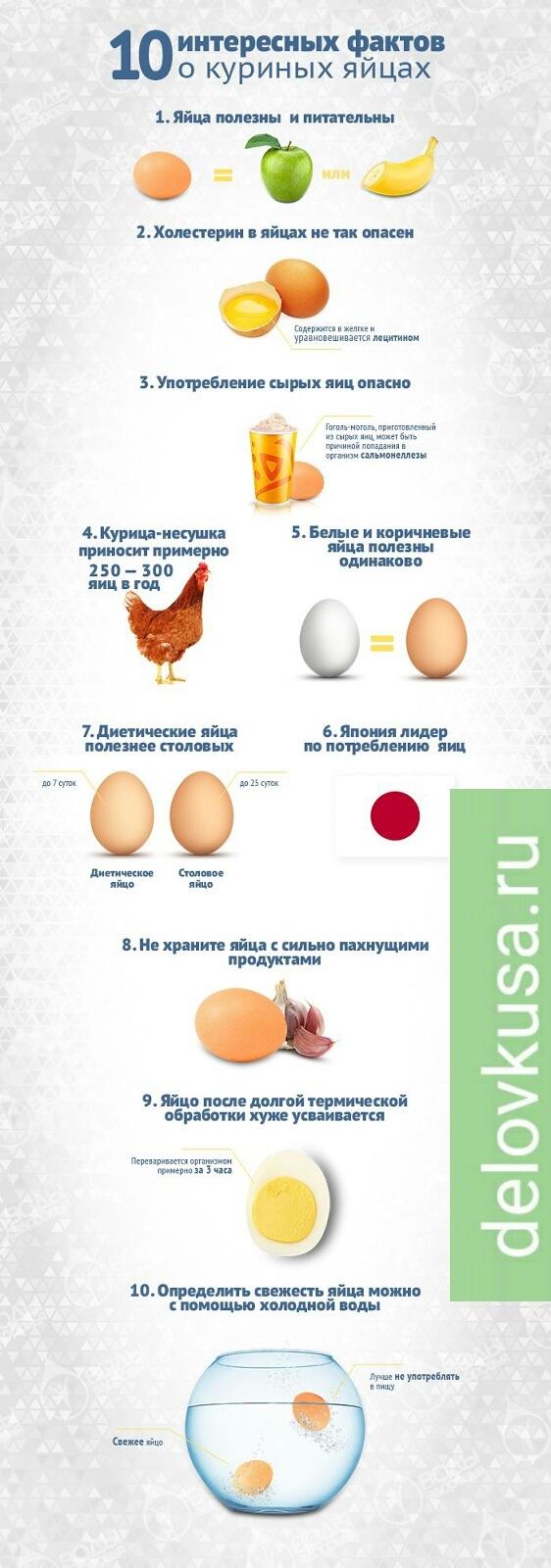 яйцо польза вред интресные факты