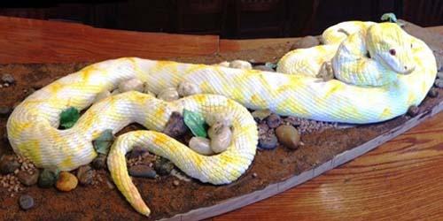 Как сделать змею из мастики своими руками
